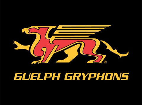 Novice AE Guelph Gryphons 2016/17