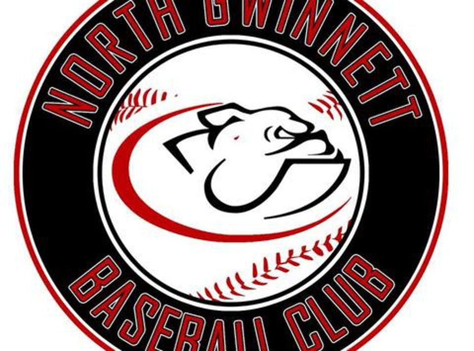 12U NG Dawgs Baseball Team