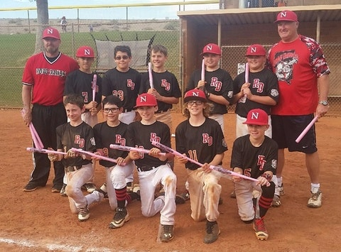 Road Dawgs 12u