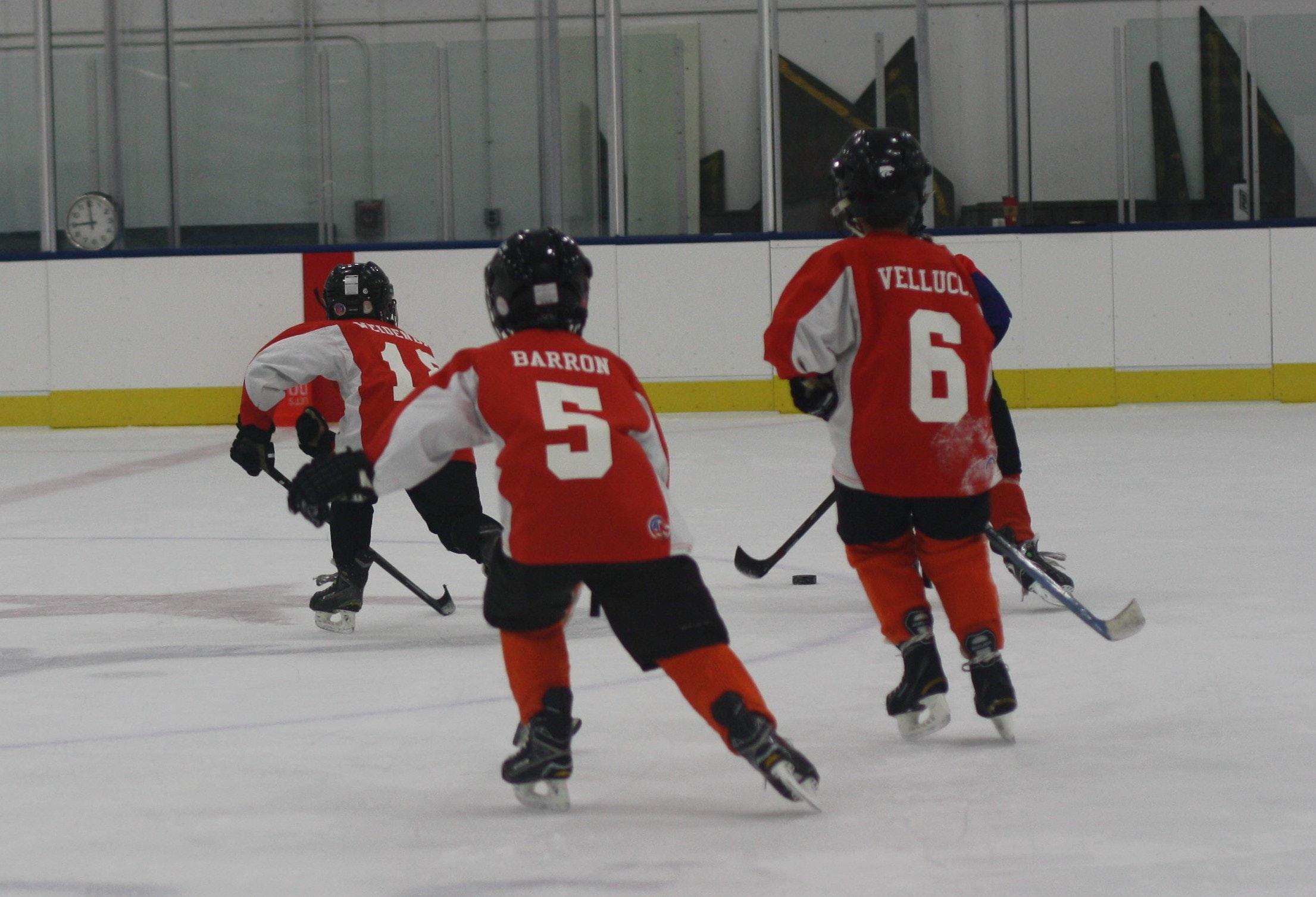 U7 Michigan Flyers Hockey