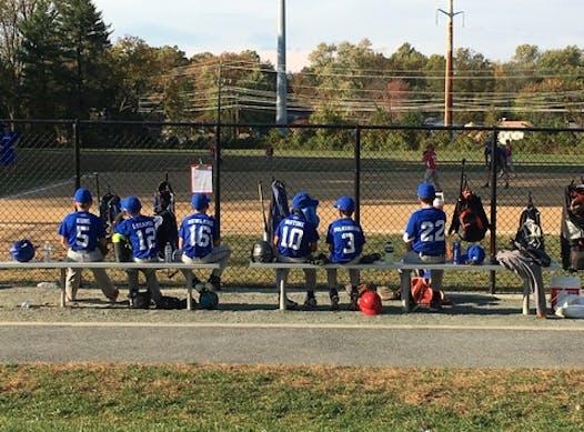 baseball fundraising - Savage Screaming Eagles - 11U Blue Team