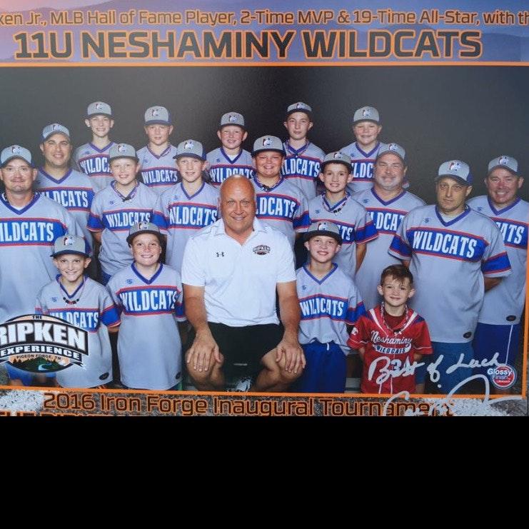 Wildcats 12u
