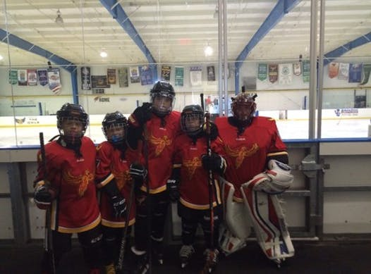 ice hockey fundraising - Atlanta Phoenix Squirts Travel Team