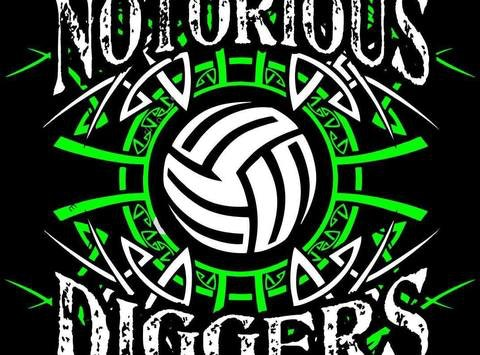 Notorious Diggers Volleyball Club