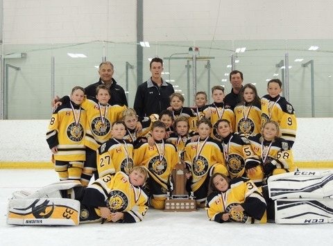Waterloo Wolves Major Atom AAA 2016-17