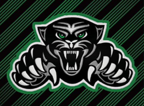 Jaguars PeeWee AA Ice Hockey