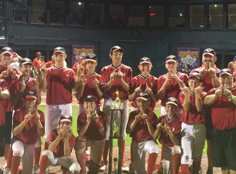baseball fundraising - Beaver Valley Express 13