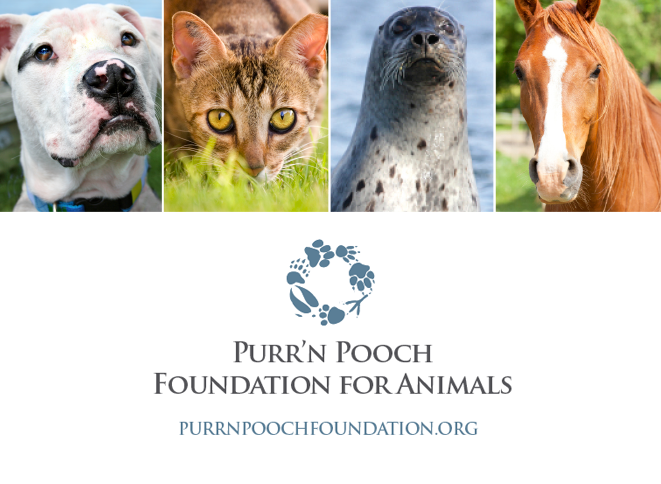 Purr'n Pooch Foundation for Animals