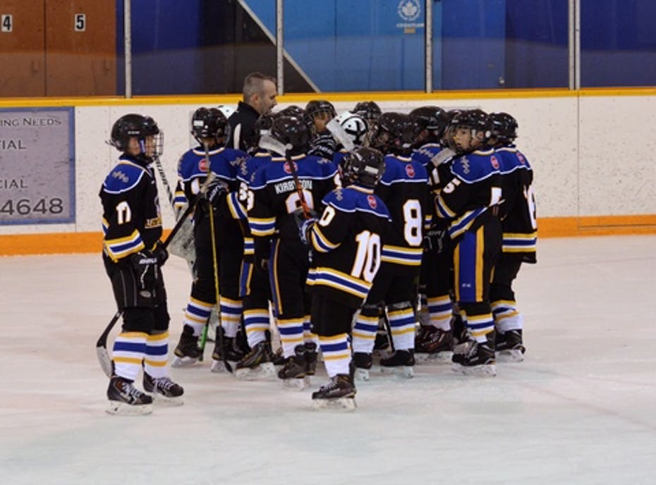 Langley Atom A2 Eagles