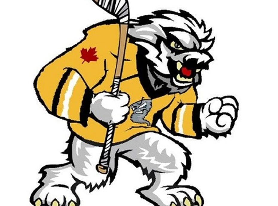 Oakville Blizzards Hockey