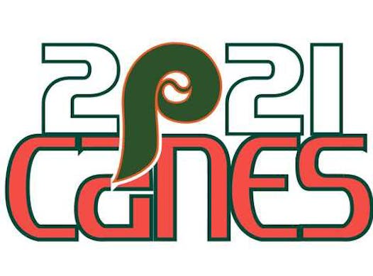 baseball fundraising - 2021 Pro Player Canes