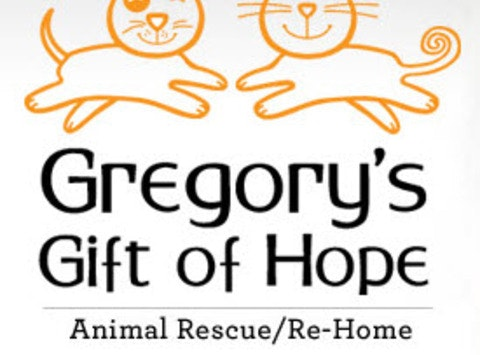 Gregory's Gift of Hope