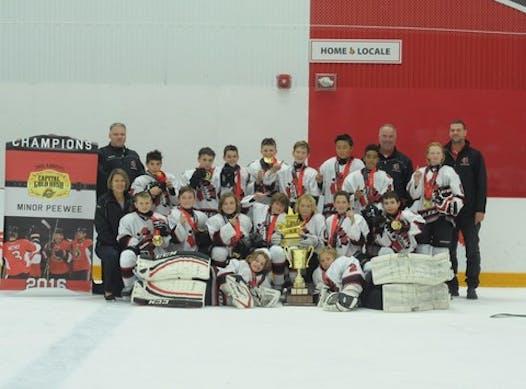 ice hockey fundraising - Minor Peewee A 2016