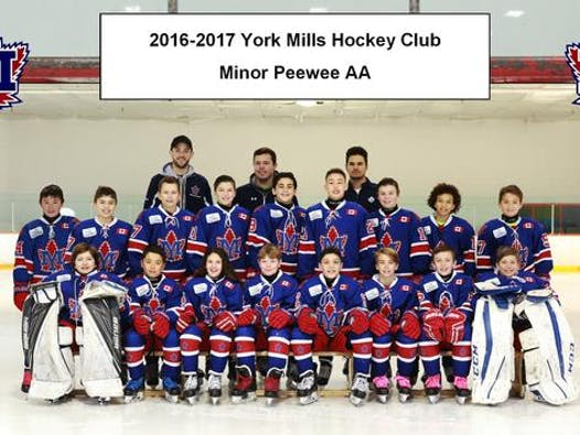 ice hockey fundraising - York Mills 2005 AA Hockey