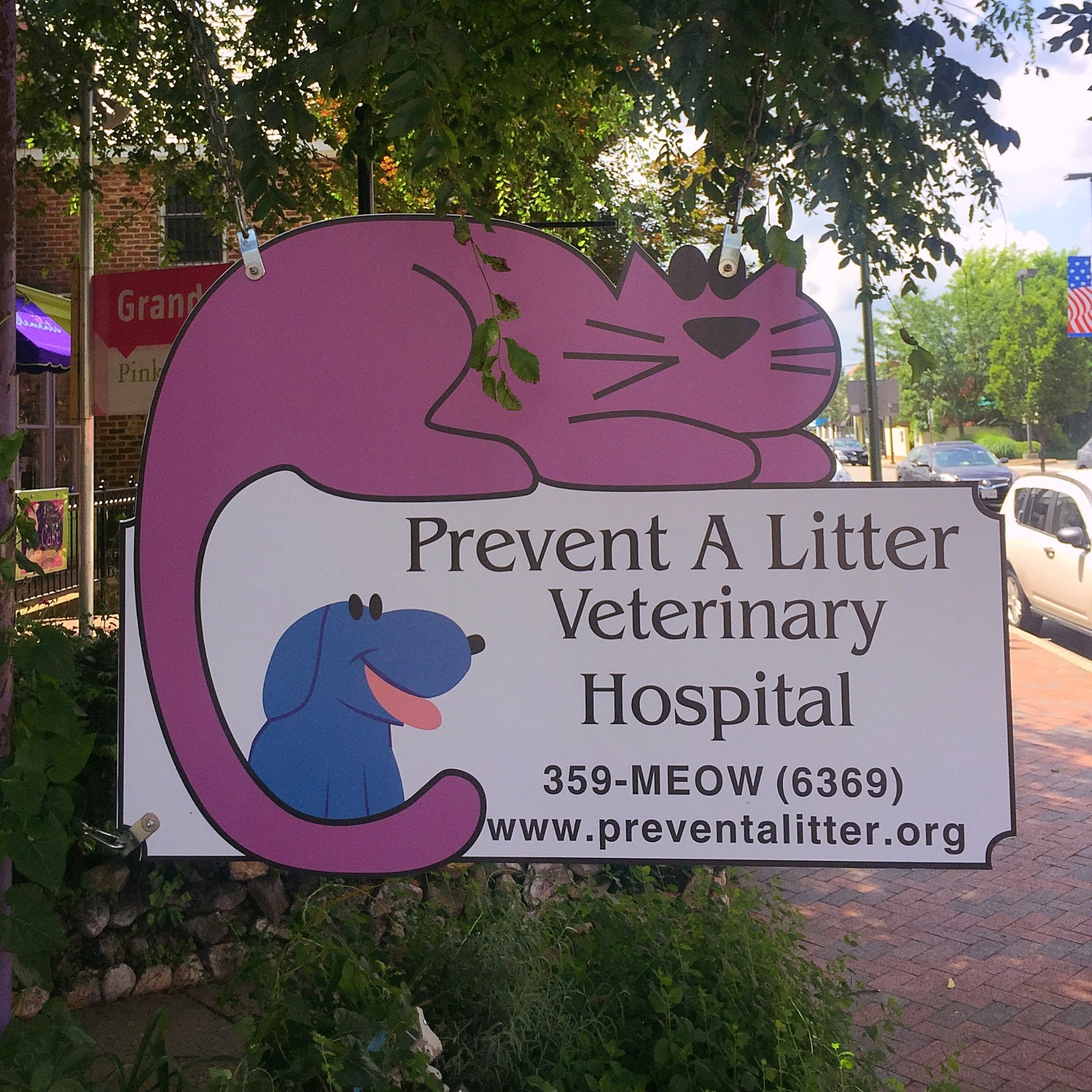 Prevent A Litter Veterinary Hospital