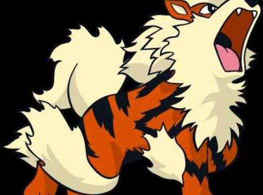 sports teams, athletes & associations fundraising - Novice #9 Tigers