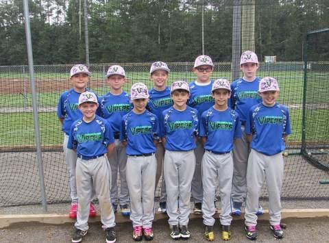 Hanover Vipers 11U Baseball