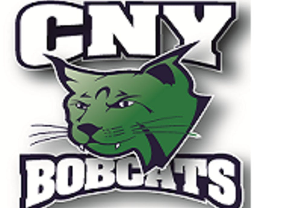 CNY Bobcats Girls Hockey 10u Team
