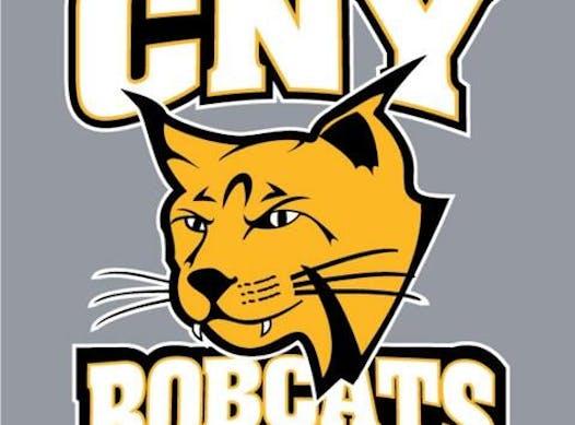 ice hockey fundraising - CNY Bobcats Girls Hockey