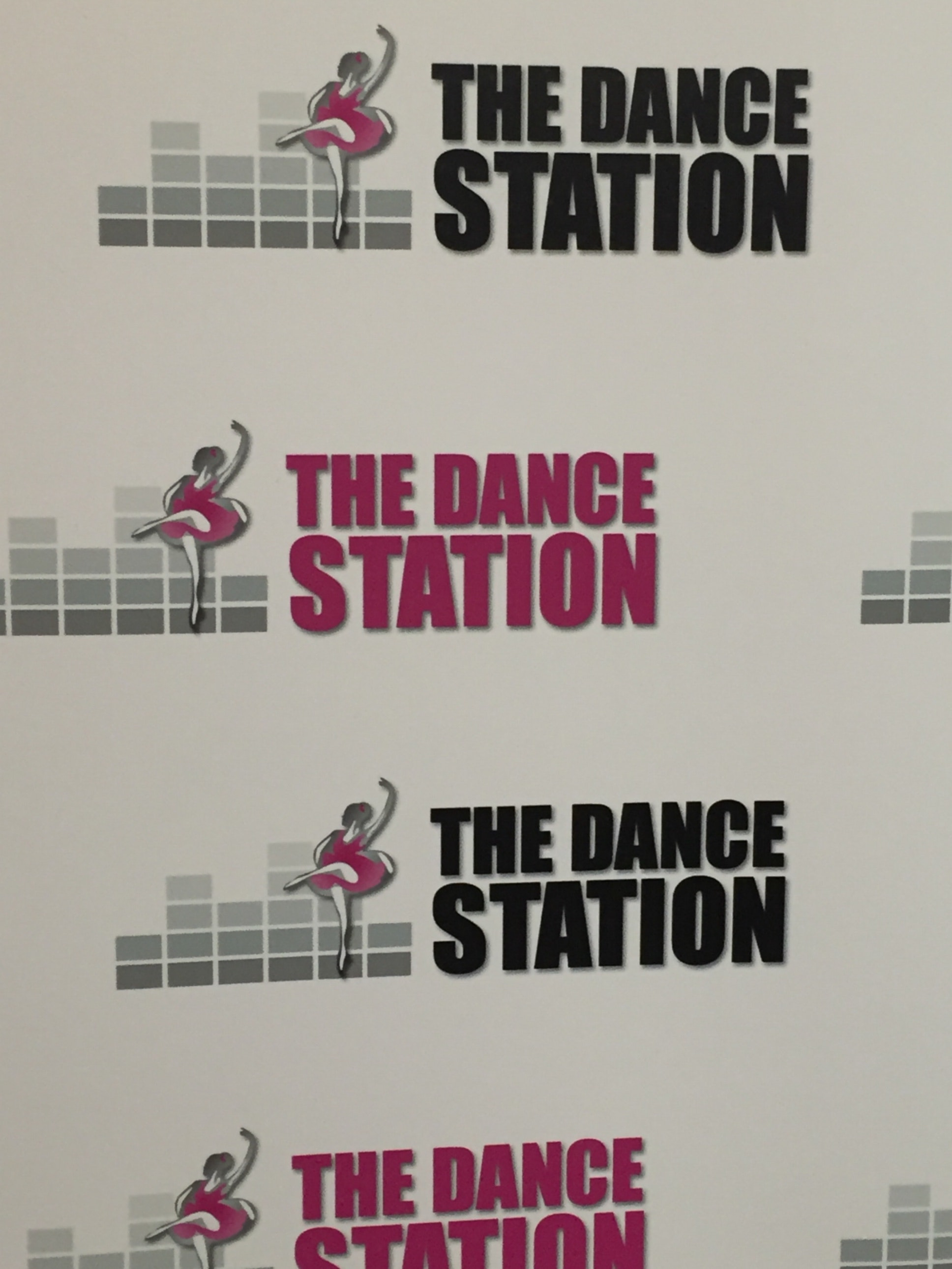 The Dance Station - Fundraising Committee