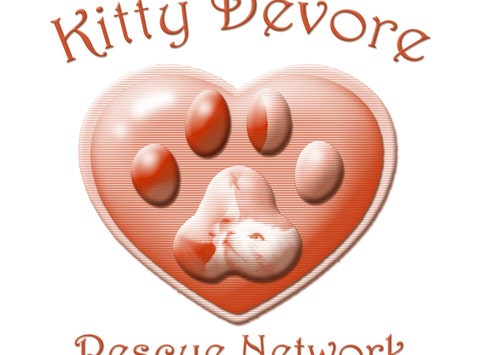 KD Christmas 2016 (Kitty Devore)