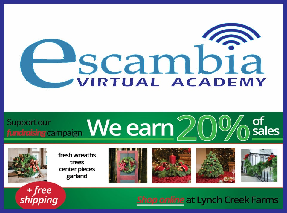 Escambia Virtual Academy
