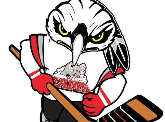 ice hockey fundraising - Stittsville Blackhawks