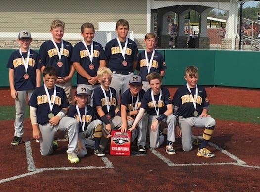baseball fundraising - Midland Blackhawks