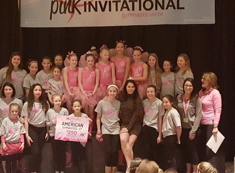 breast cancer fundraising - American Gymnastics for Unite For HER