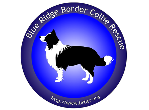 Blue Ridge Border Collie Rescue