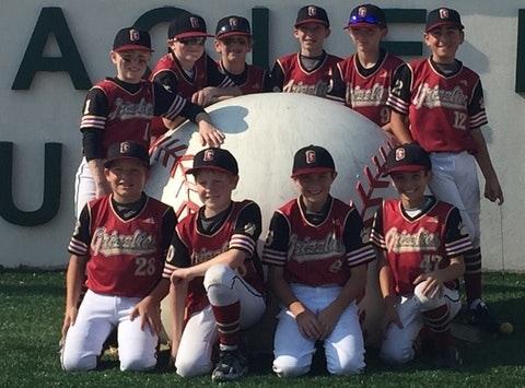 baseball fundraising - Grizzlies Baseball Club