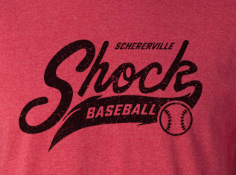 baseball fundraising - 10u Schererville Shock