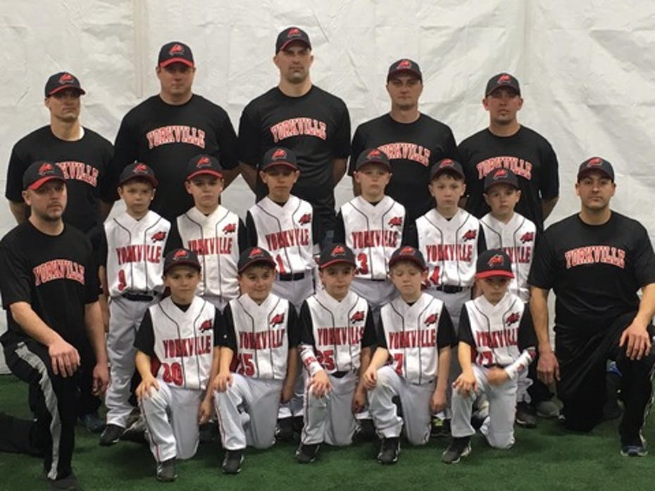 8u Foxes baseball team