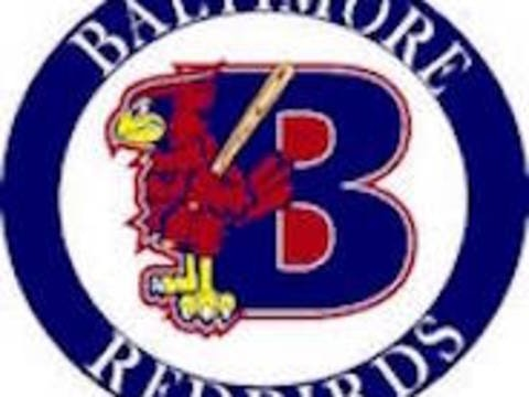 other organization or cause fundraising - Baltimore Redbirds 12U