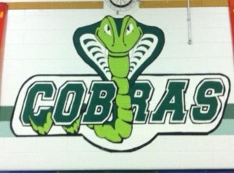 elementary school fundraising - The Caistor Cobras