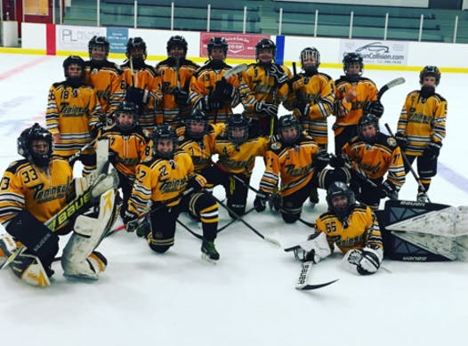sports teams, athletes & associations fundraising - PMHA PeeWee A