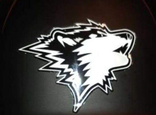 softball fundraising - The Jersey Shore Huskies 2k4