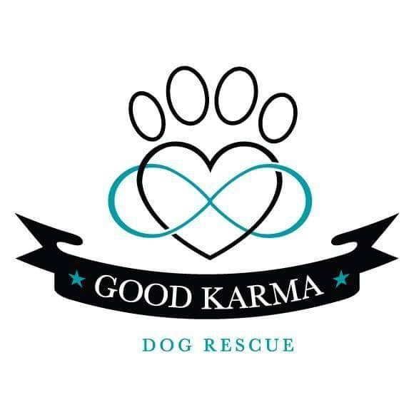 Good Karma Dog Rescue