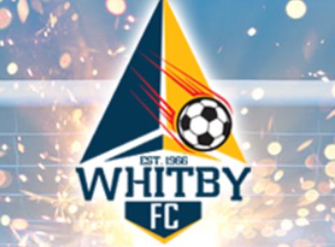 soccer fundraising - WISC 2003 Boys CSL A Team