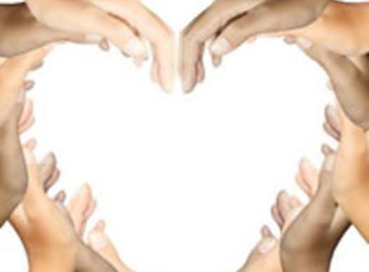 community improvement projects fundraising - Soroptimist International of Toronto