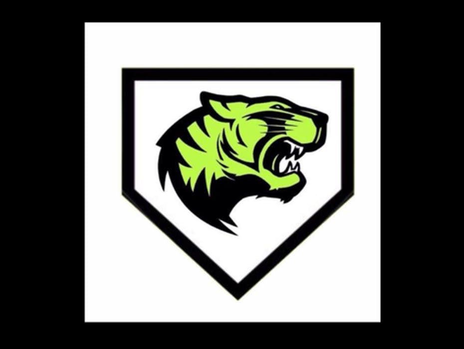 Cali Tigers 10U Team