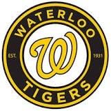 Waterloo Tigers Mosquito Tier I