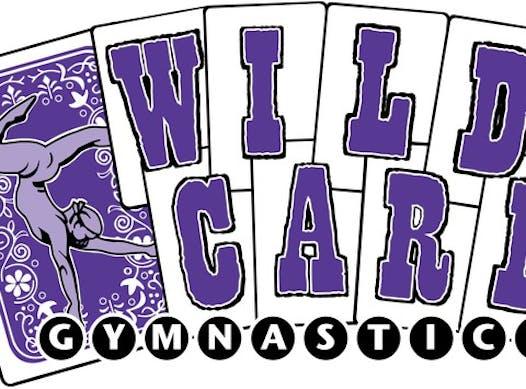 gymnastics fundraising - Wildcard Gymnastics