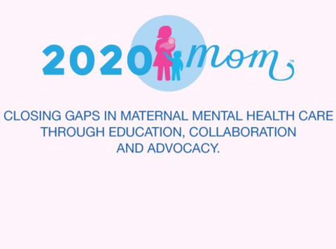 other organization or cause fundraising - 2020 Mom/National Coalition of Maternal Mental Health