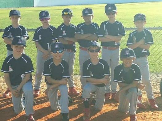baseball fundraising - Florida alliance