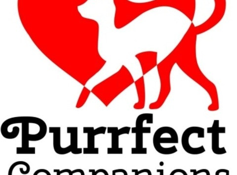 other organization or cause fundraising - Purrfect Companions of Norfolk Cat Rescue & Adoption