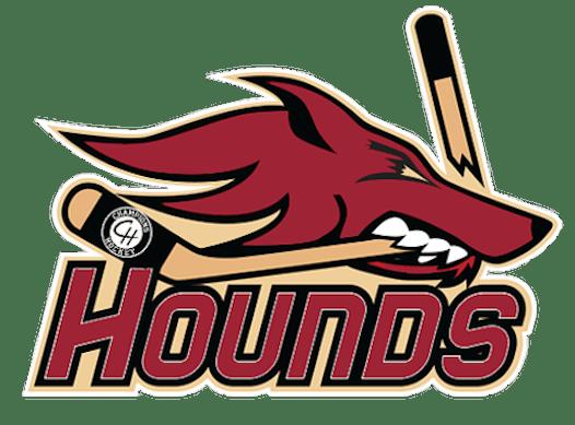 ice hockey fundraising - Capital Hounds 07