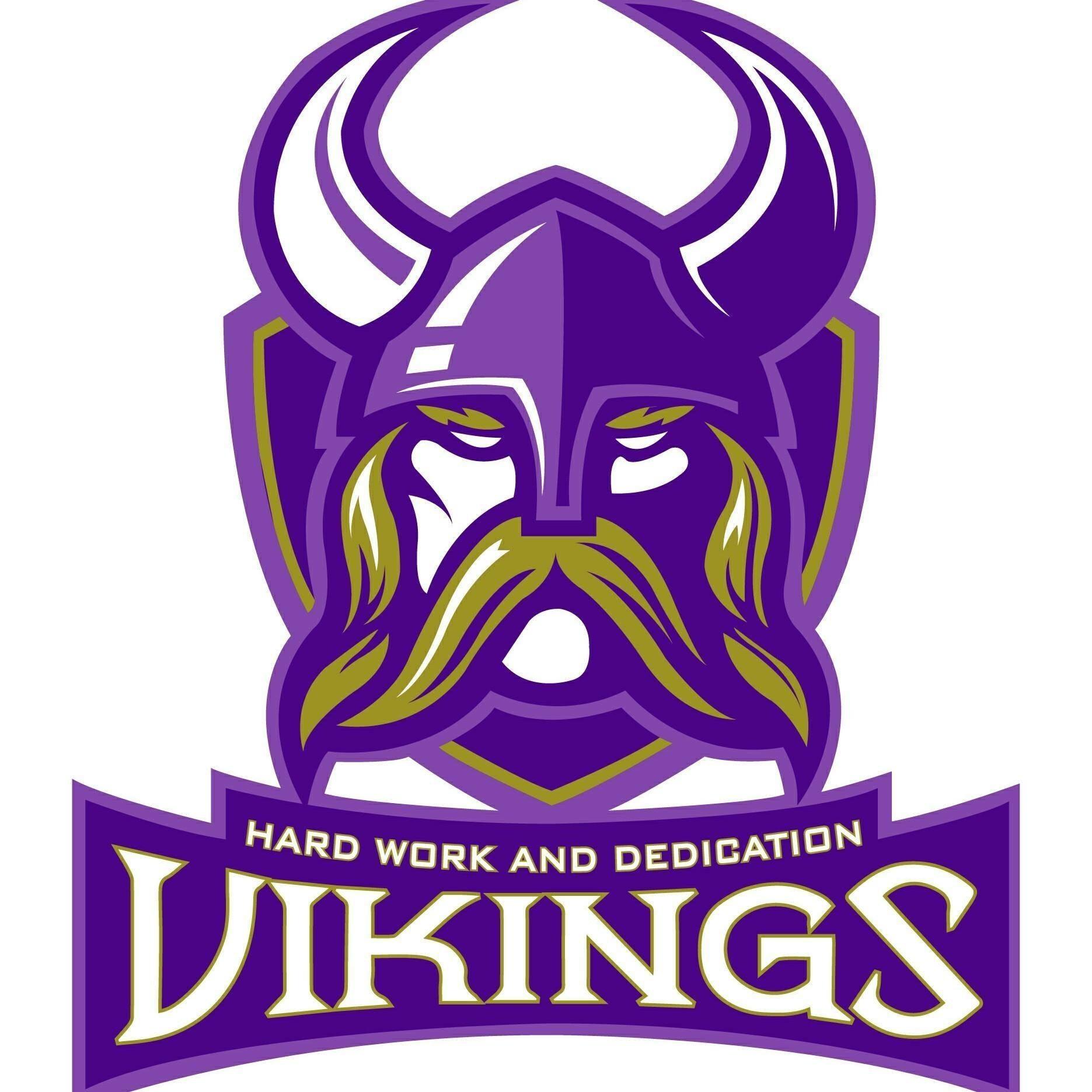 CS Vikings