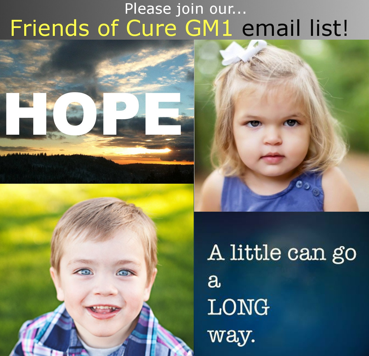 Cure GM1