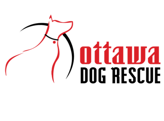 other organization or cause fundraising - OTTAWA DOG RESCUE